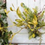 【LIFE STYLE】パリ近郊 花とともに暮らす