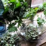 【LIFE STYLE】パリ近郊 花とともに暮らす ㉑緑の時間