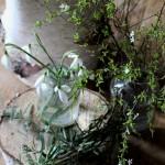 【LIFE STYLE】パリ近郊 花とともに暮らす㉕スノ-ドロップの季節