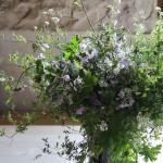 【LIFE STYLE】パリ近郊 花とともに暮らす㉝青空と花吹雪