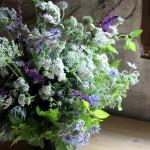 【LIFE STYLE】パリ近郊 花とともに暮らす ㊸夏至の夜