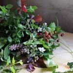 【LIFE STYLE】パリ近郊 花とともに暮らす ㊺べリーの季節
